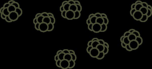 multebær-footer